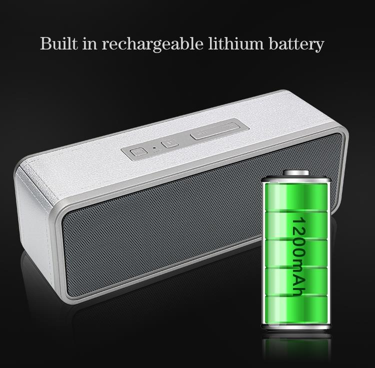 speaker withlithium battery.jpg