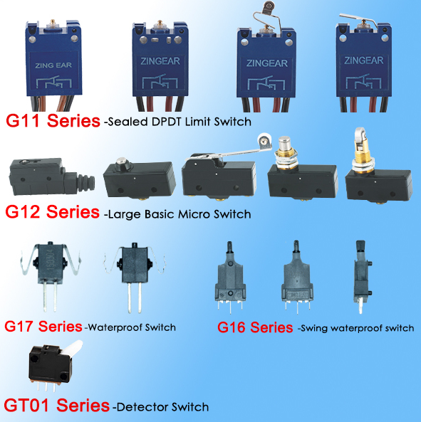 micro switch company China