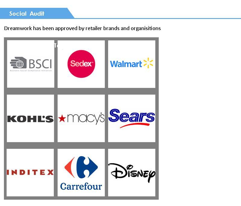 Social Audit.jpg