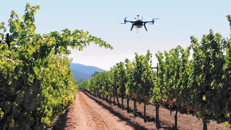 agricultural drone pestcide spraying 3.jpg