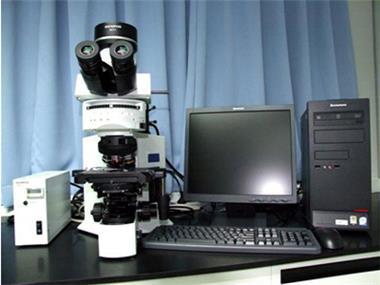 12.  Metallographic Microscope_副本.jpg