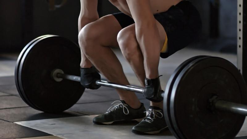 What is needed for Muscle Gain