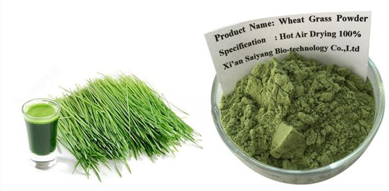 wheatgrass powder.jpg