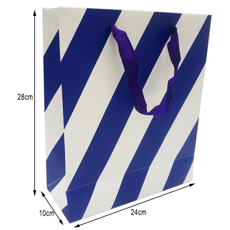 shopping paper bag (2).jpg
