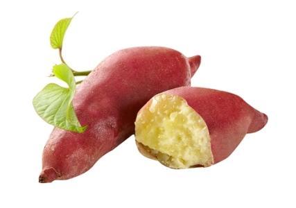 Sweet Potato Powder.jpg