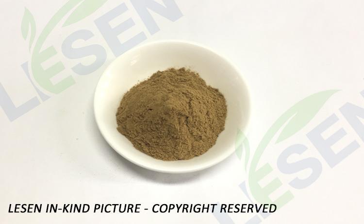 Rehmannia glutinosa (4)