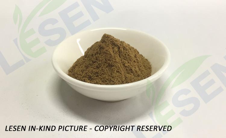 Rehmannia glutinosa (2)
