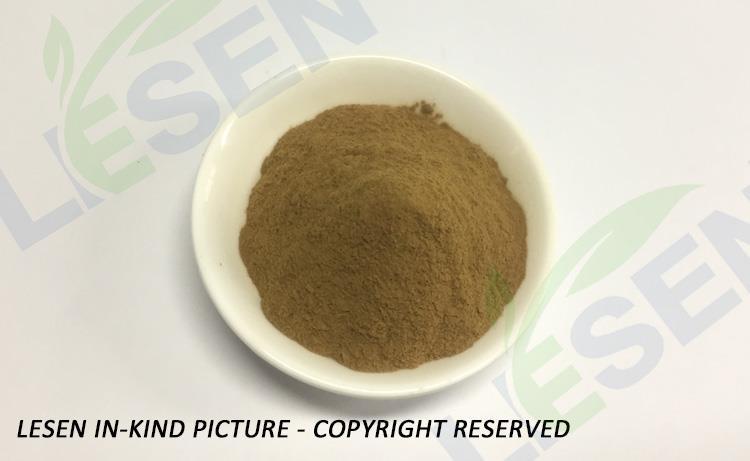 Diospyros Kaki Leaves Extract Powder (1)