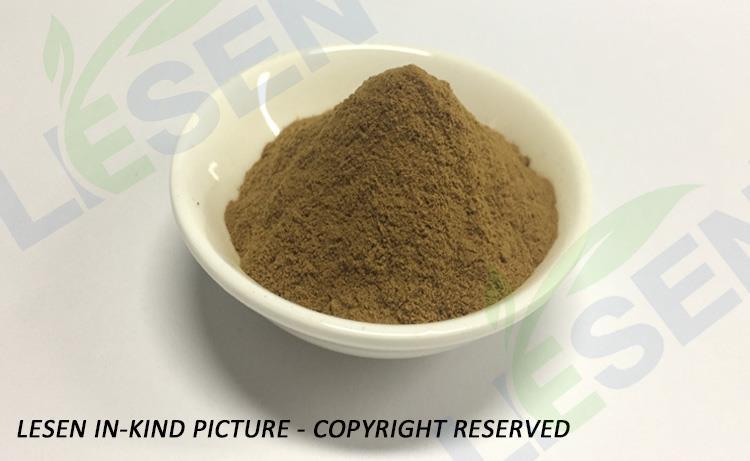 Diospyros Kaki Leaves Extract Powder (3)