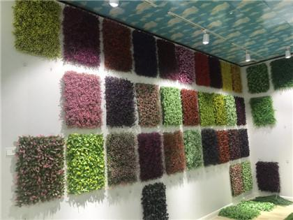 Artificial Plant Wall show room