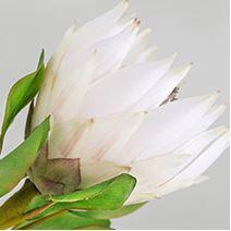 High quality artificial vileplume flower