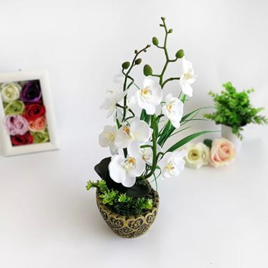 High Imitation stone orchid flowers set