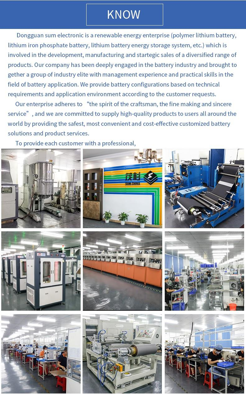 Lithium battery manufacturer (1).jpg