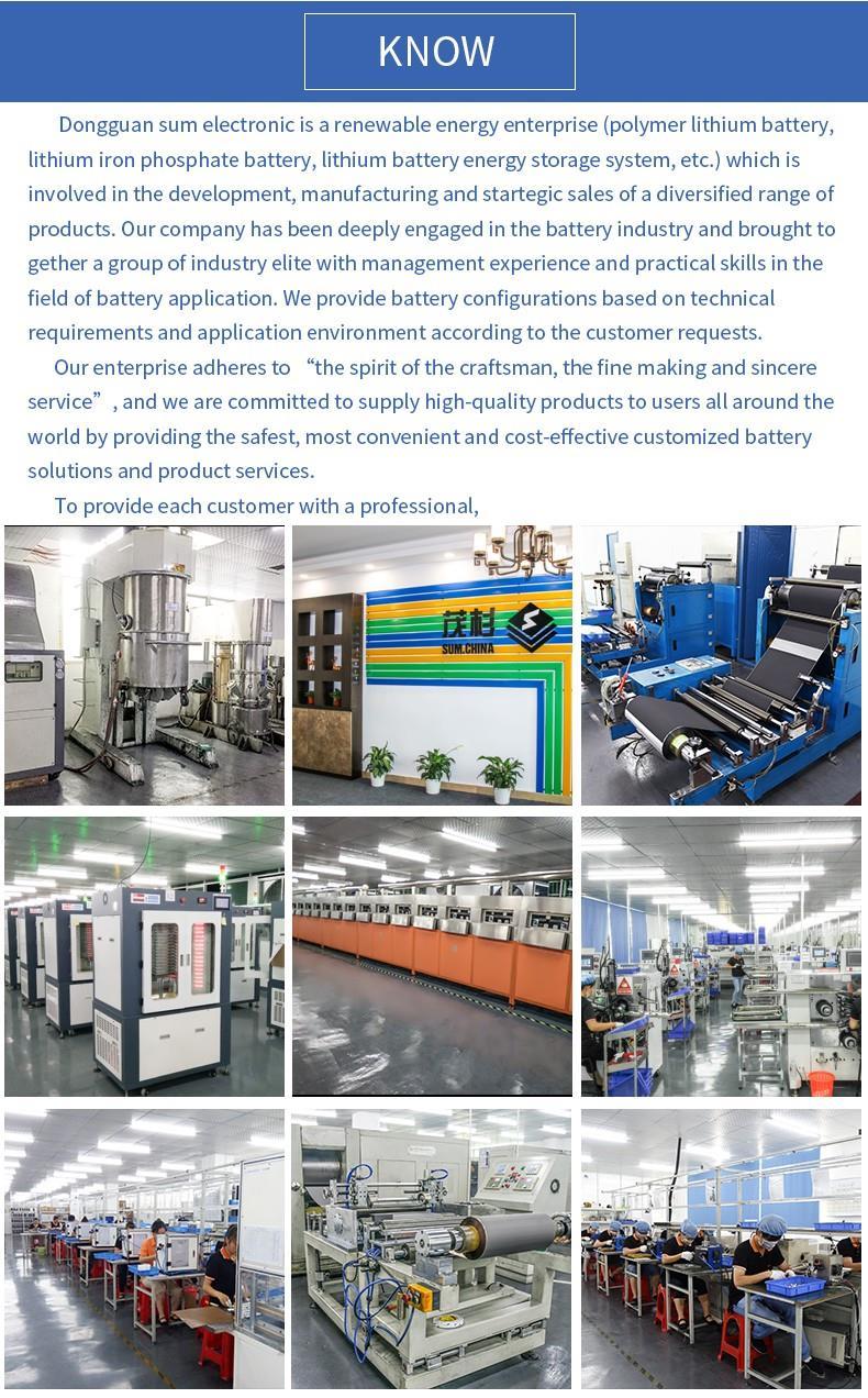 Lithium battery manufacturer (1).jpg