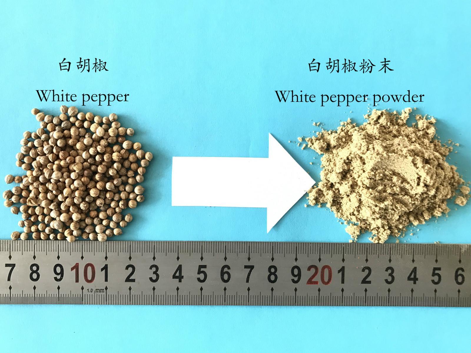 White pepper powder milling machine (3)_meitu_20.jpg