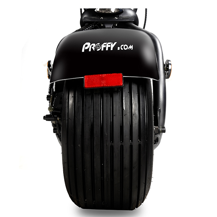 fat tire citycoco scooter.jpg