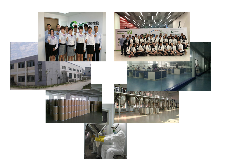 Company&Factory..png