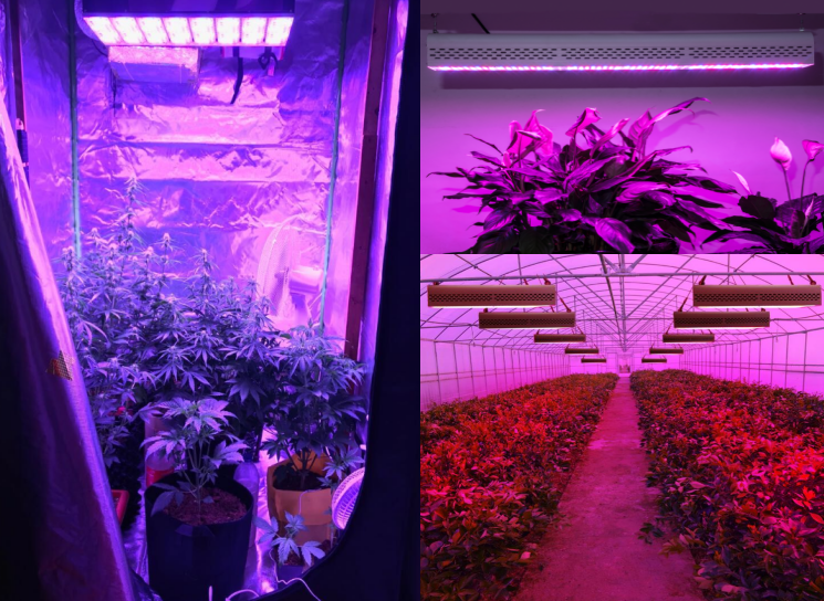linear grow light to use