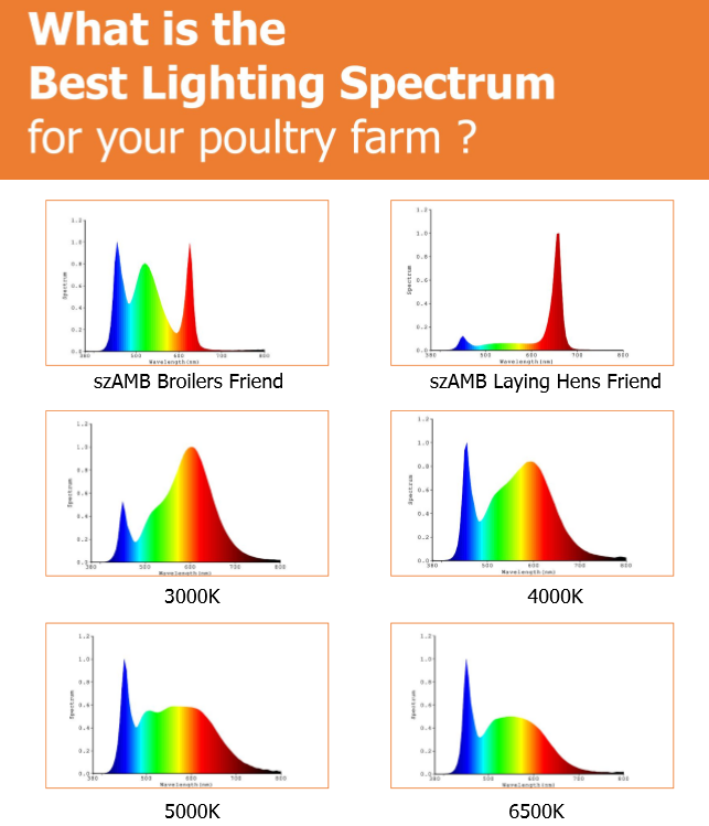 Light Spectrum for chicken.PNG