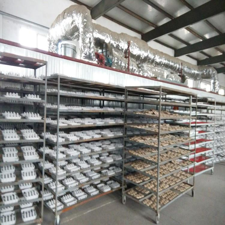 Disposable Pulp Seed Starters factory