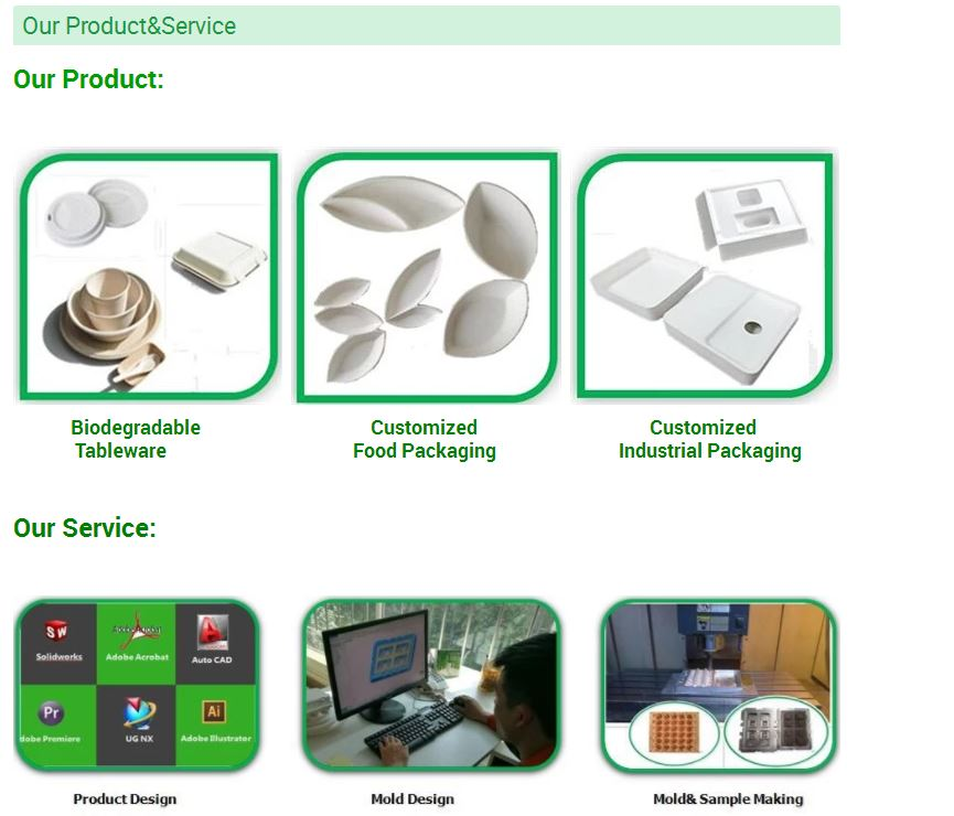 Custom Made Freezer And Microwave Safe Food Packaging Container  making