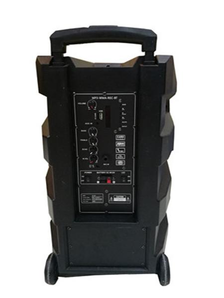 speaker back panel.jpg