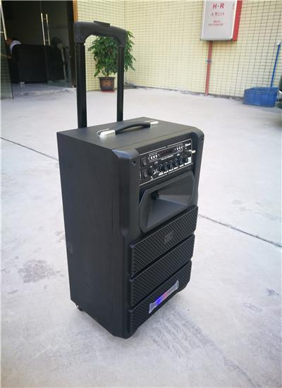 New Private 8inch Trolley Speaker.jpg