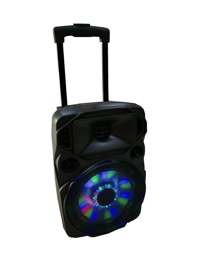 trolley bass speaker   rechargeable   (1).jpg