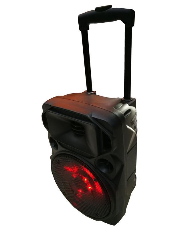 trolley bass speaker   rechargeable   (3).jpg