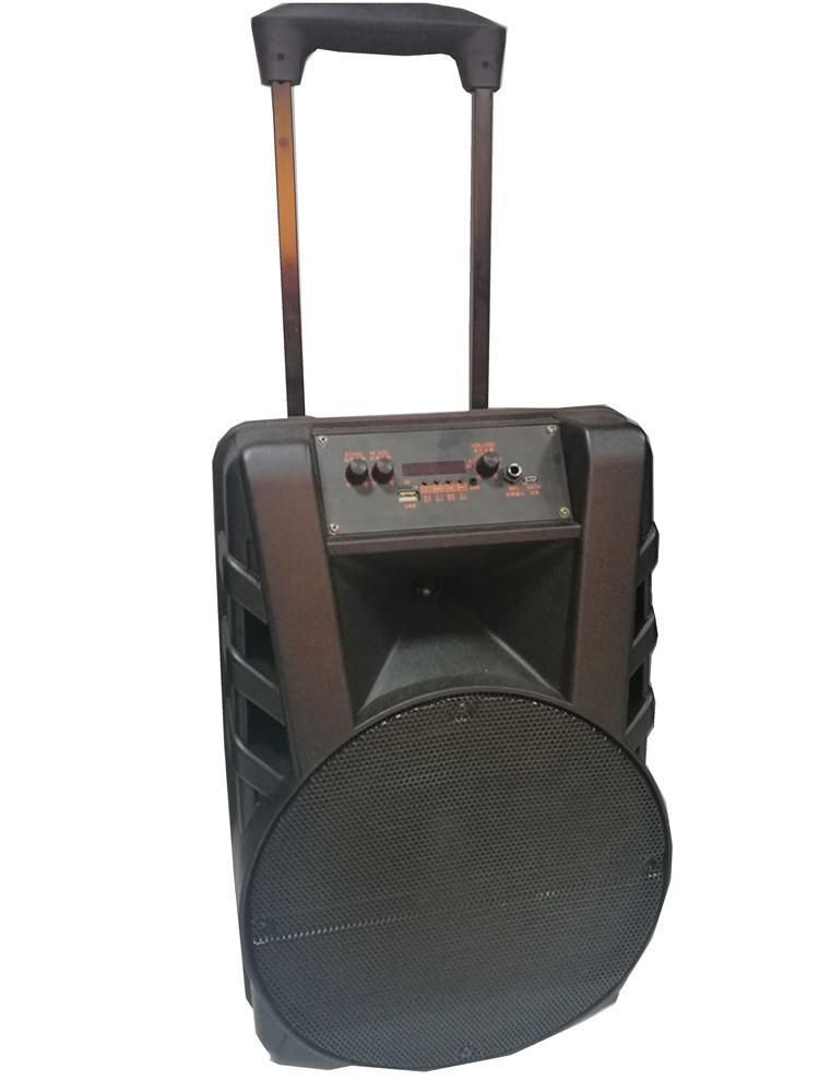 New Arrival 12 Inch Trolley Speaker.jpg