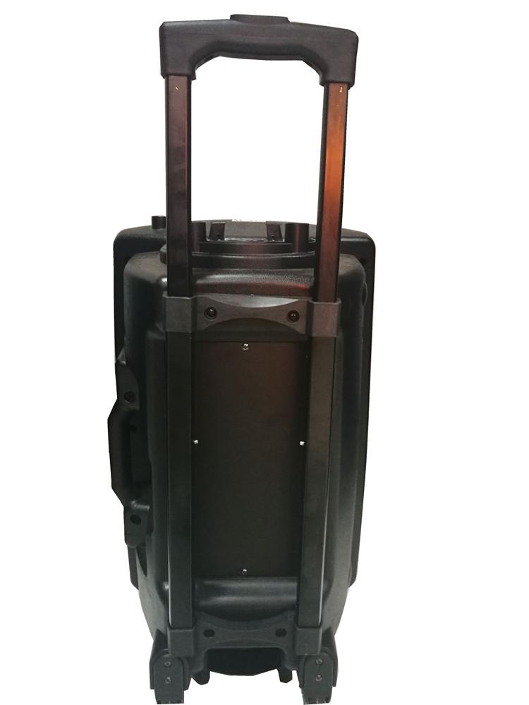 Big Size 12 Inch Discount Speaker.jpg