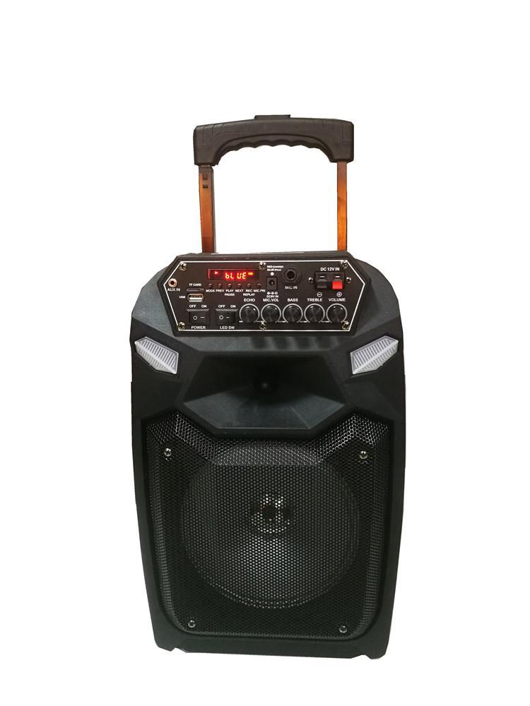 Outdoor New 8 Inch Rechargeable Speaker.jpg
