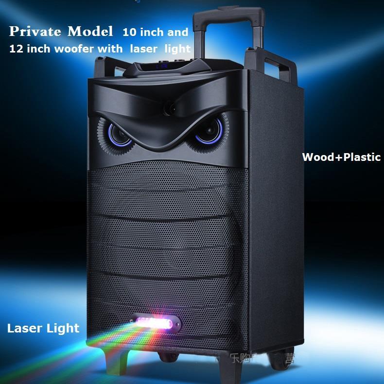 Private Audio Visual Wooden Trolley Speaker.jpg