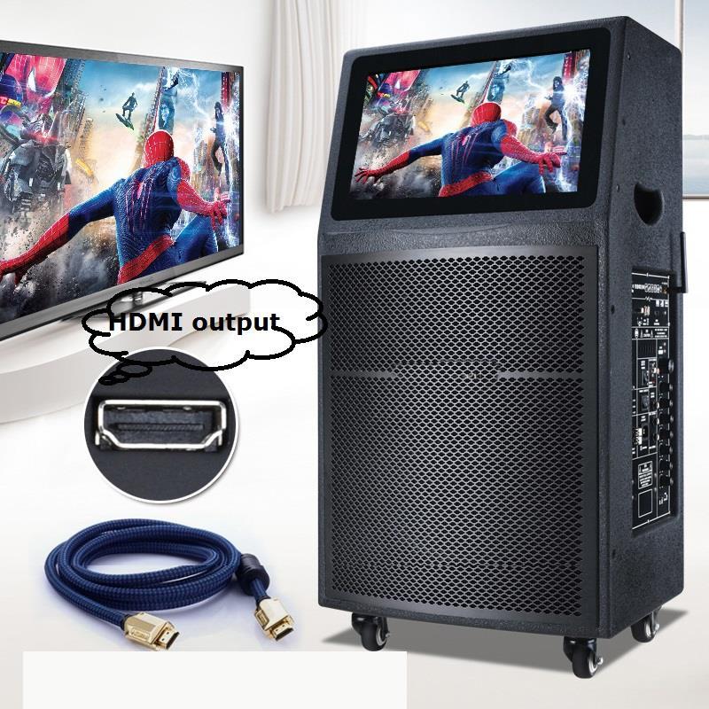 HDMI Output Big Screen KTV Sound System.jpg