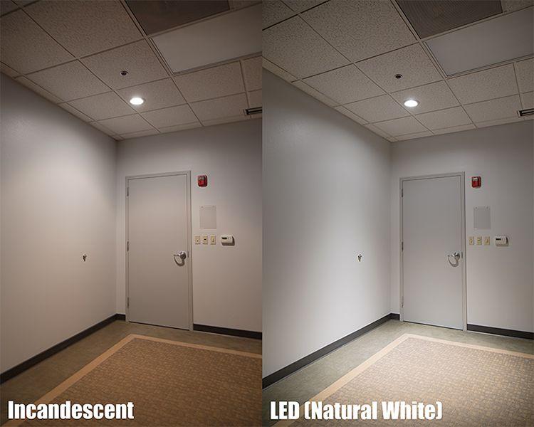 GU10-COB-LED-Spot-Light-1.jpg