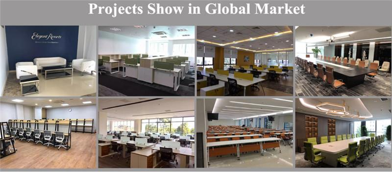 lopottion projects show in Global market