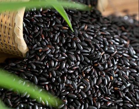 Black Rice Extract.jpg