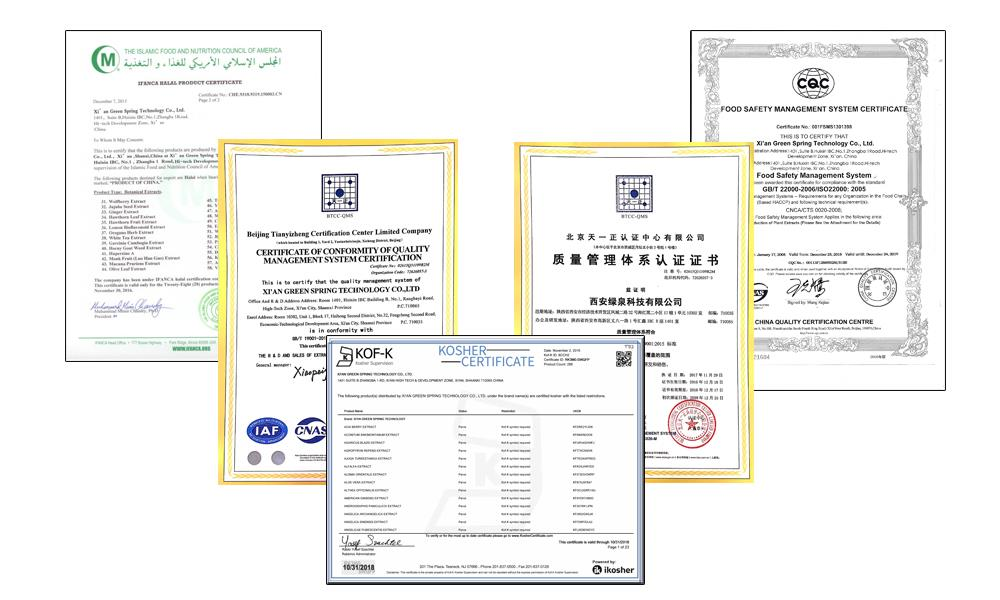 Certificate of qualification.jpg