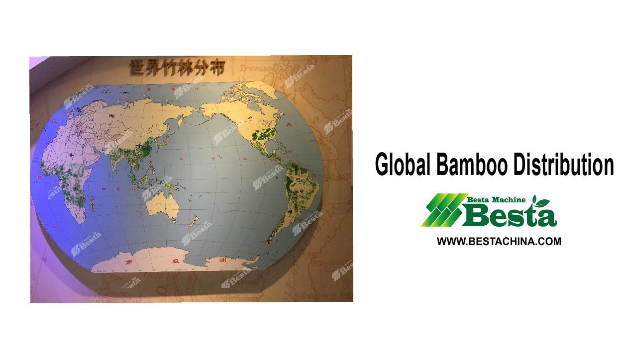 Globlal bamboo distribution