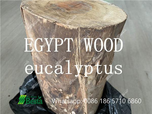 egypt wood