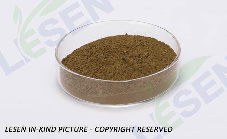 Osha Powder (3)