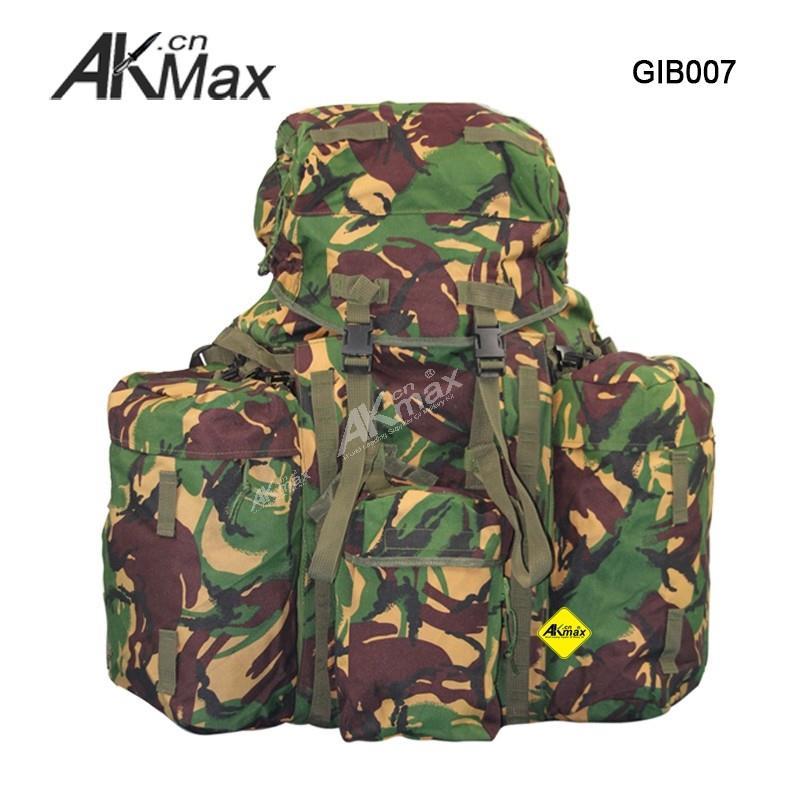 GIB007-01