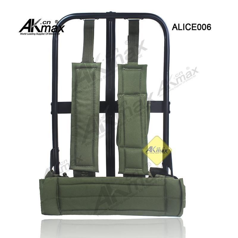 ALICE006-09