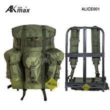 ALICE001-1