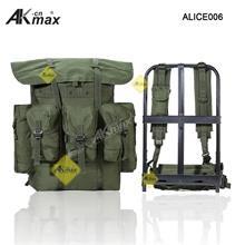 ALICE006-01