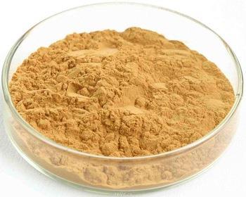 Capsicum-Annuum-Extract-Powder