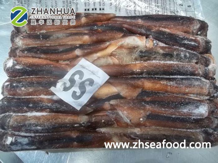 Illex-Squid-Size-SS