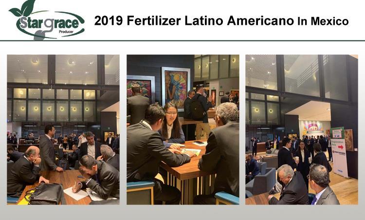展会 2019 FLA-3