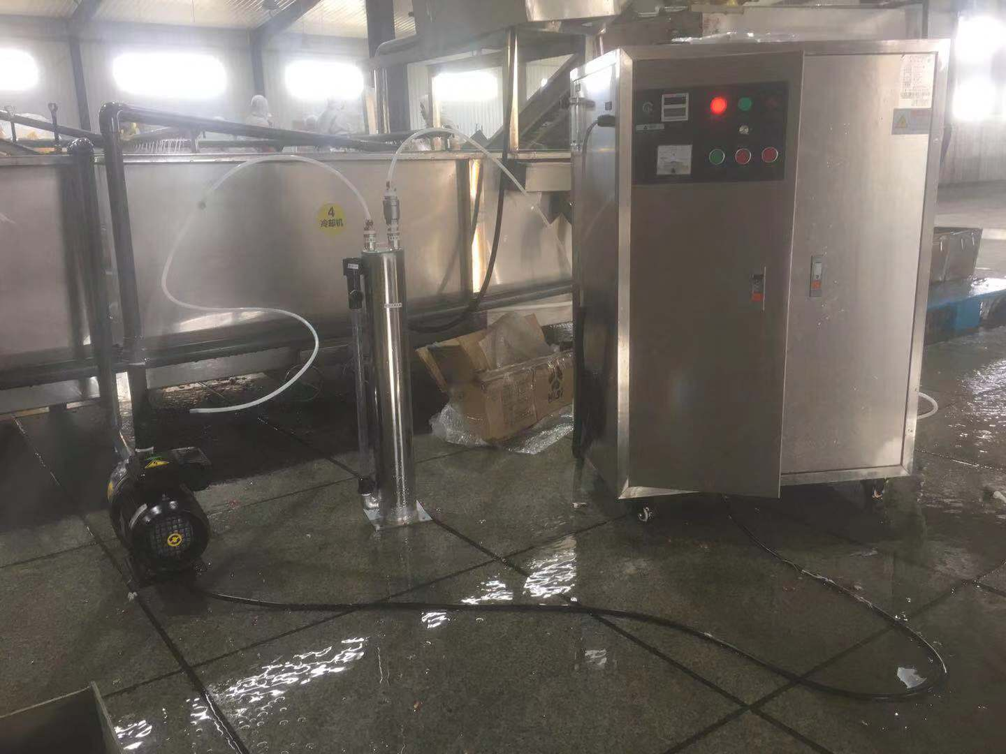 Ozone Generator for Commercial Fruit Washing